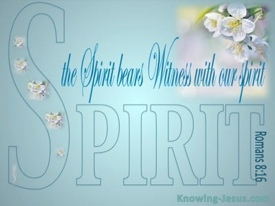 Romans 8:16 The Spirit Bears Witness (blue)